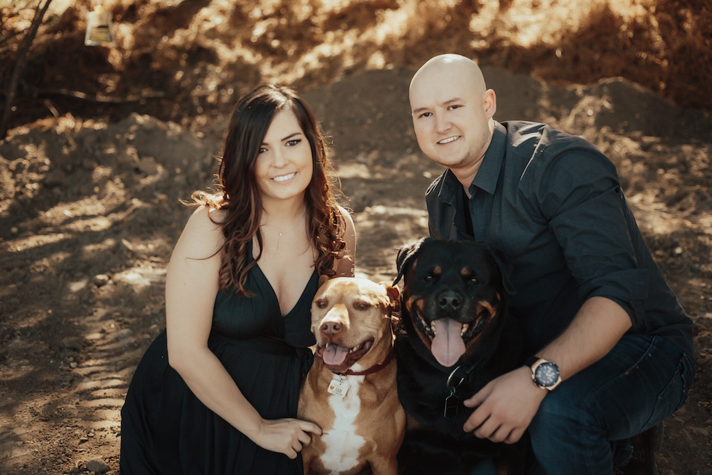 Engagement photoshoot with their two dogs in a field